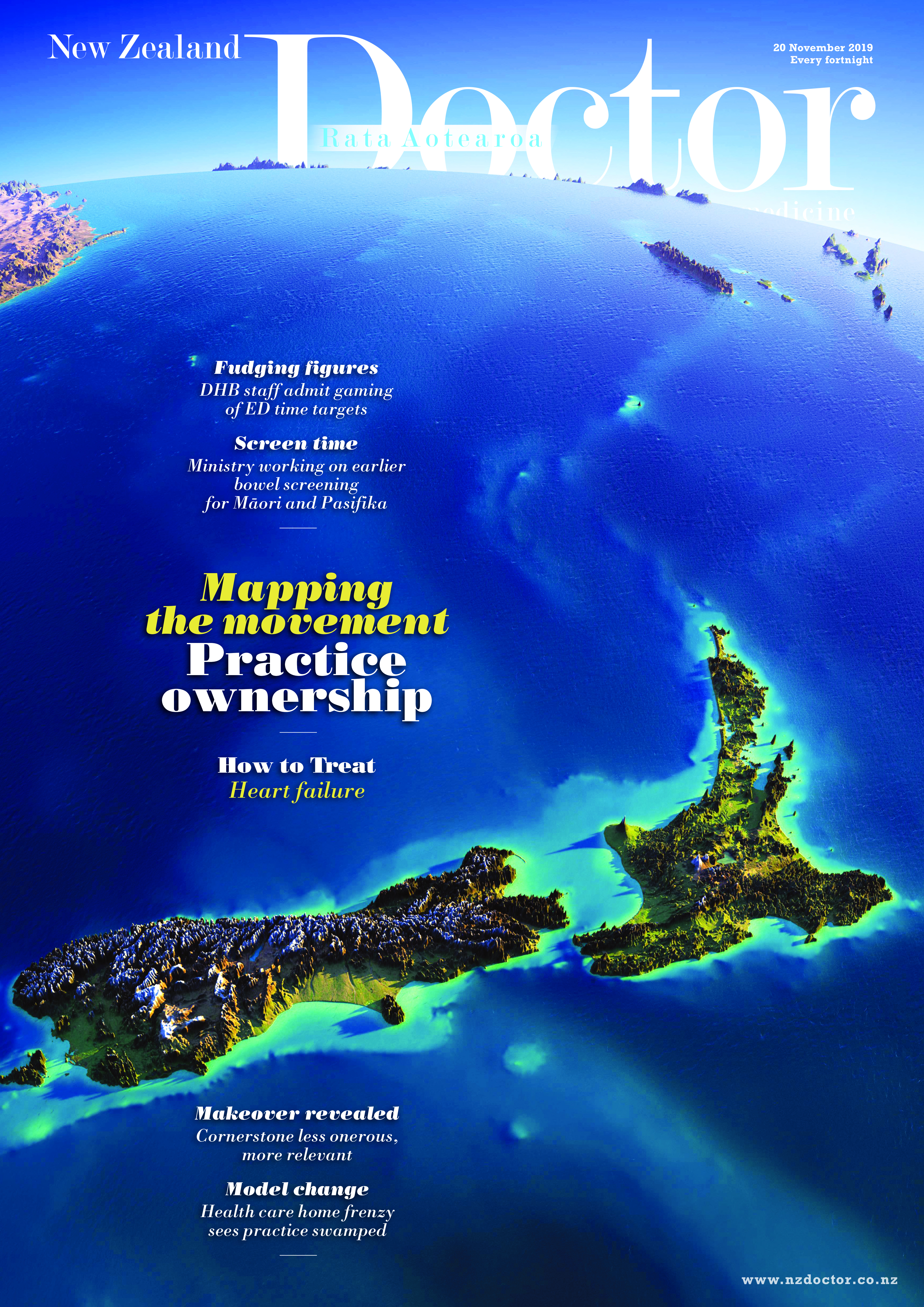 NZD Cover 20112019