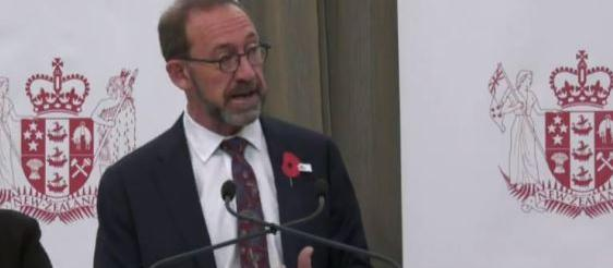 Andrew Little, health announcement