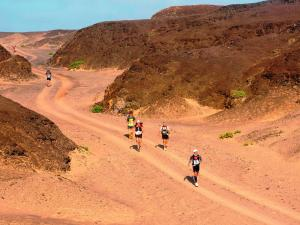 Desert running is a balancing act between staying hydrated and retaining essential minerals