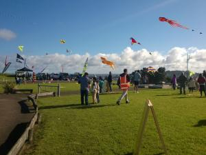 Matariki kite festival Mt Roskill 2015 [photo: Le Loi / Wikicommons]
